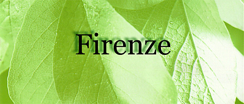Firenze Tower II Logo